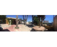 Finca Rústica Alquiler Alicante
