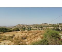 Terreno Venta Alicante