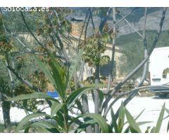Finca Rústica Venta Alicante